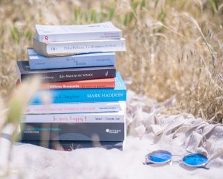 Aglaiaco blog summer livre book %c3%a9t%c3%a9 %287%29
