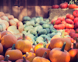 Recette courge automne nature header